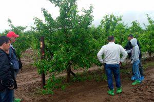 Визит специалистов компании Фертико (Сербия) в хозяйства Самарской и Волгоградской области
