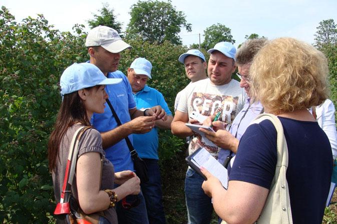 Посещение ягодных хозяйств северной Сербии