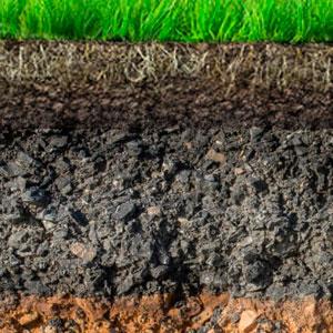 Анализ почвы - важный элемент управления питанием растений. Часть первая
