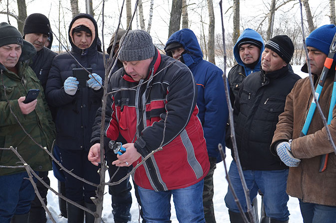 Семинар по обрезке деревьев в Рязанской области