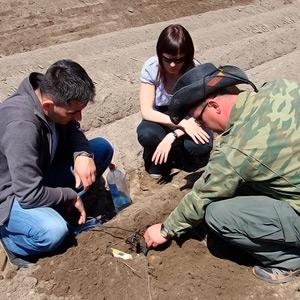 Важность измерения ЕС почвы при выращивании культур